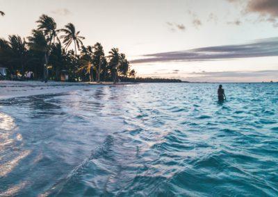 beach-caribbean-dawn-2598675